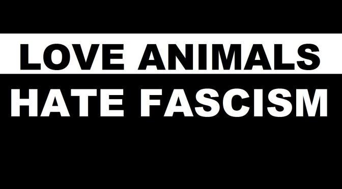 Dlaczego faszyzm nie idzie w parze z zielonym aktywizmem?