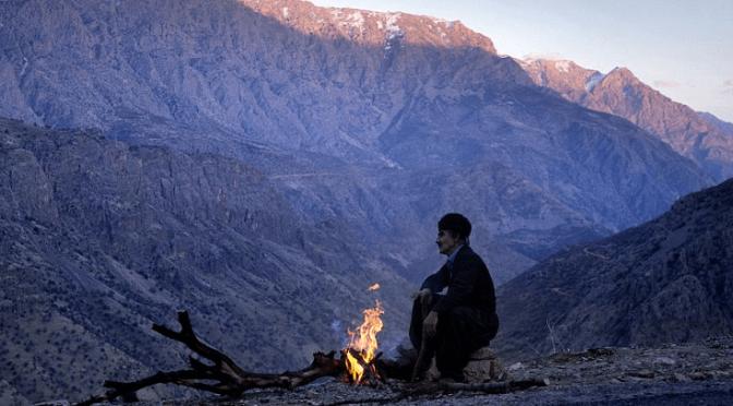 Kurdyjska odpowiedź na zmiany klimatyczne [ROJAVA]