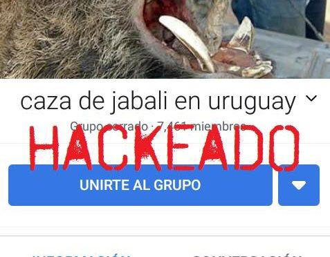 Zhakowano grupę na FB o tematyce polowań na dziki! [URUGWAJ]