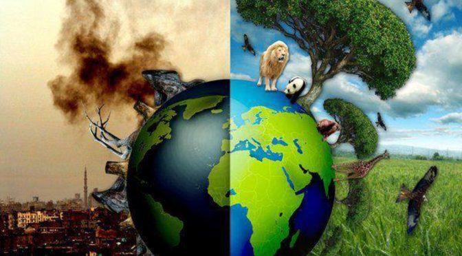 Ludzkość stanowi jedynie 0.01% życia na Ziemi, ale zdołała wybić 83% dzikich ssaków