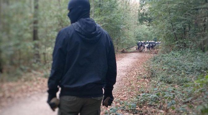 Aktualizacja w sprawie Hambacher Forest [NIEMCY]
