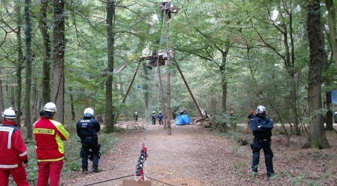 Policja znów w Hambacher Forest. Dzień X jeszcze nie nastąpił [NIEMCY]