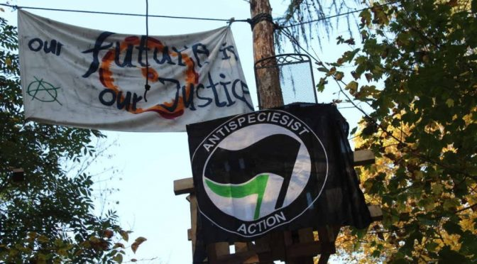 Komunikat w sprawie śmierci dziennikarza społecznego w Hambacher Forest
