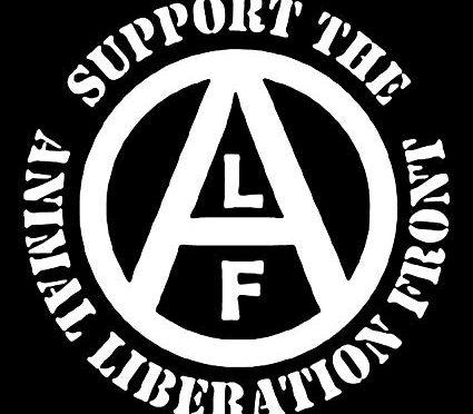 Kim jest ALF?
